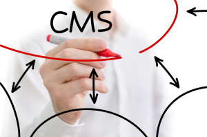 The Best CMS 2013