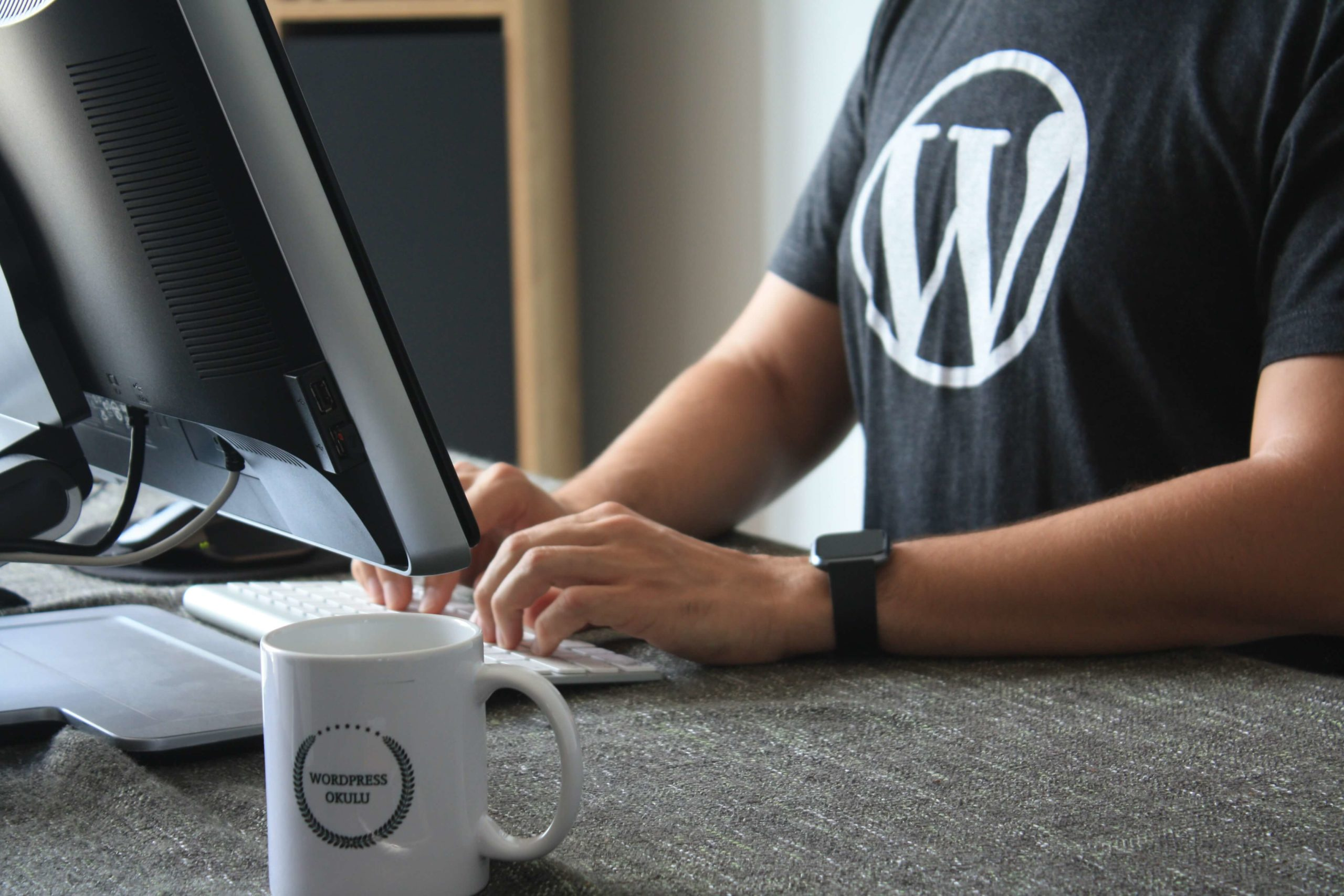 WordPress Multisite franchise website development.